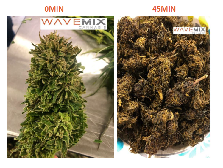 New Cannabis Processing Product: WaveMix™ Cannabis